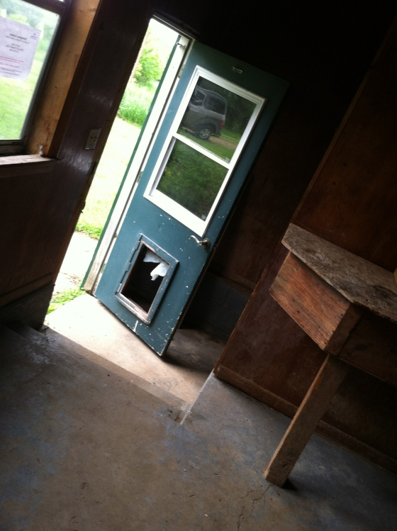 Porch Door to Yard