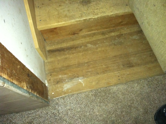 Bottom of Stairs & Fir Under Living room Carpet