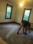 Project started by gutting carpet