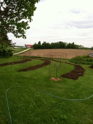 Orchard on Contour (Not quite finished)