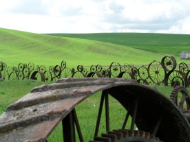 wheel-fence-the-palouse